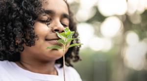 Dicas para cuidar do meio ambiente com atitudes cotidianas